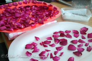 Dried flowers-5